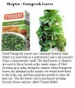 Shoptsa - Fenugreek Leaves